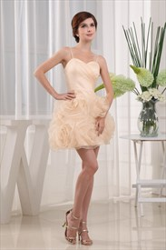 Short Champagne Homecoming Dress,Cinderella Organza Dress With Flowers