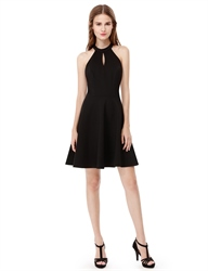 Halter Lace Embellished Open Back Short Homecoming Dress With Keyhole