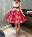 Knee Length Sleeveless A-Line Embellished Applique Homecoming Dress