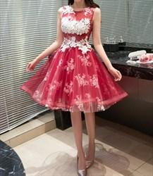 Knee Length Sleeveless A-Line Embellished Applique Homecoming Dress