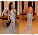 Light Blue Sheer Lace Applique Open Back Long Mermaid Formal Dress