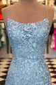Light Blue Trumpet/Mermaid Spaghetti Straps Lace Applique Prom Dresses