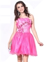 Hot Pink Short Beaded Organza Strapless Dress With Floral Embellishment