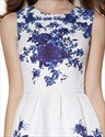 White Sleeveless Fit And Flare Skater Dress With Blue Floral Print