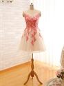 Champagne Sheer Neckline Knee Length Sleeveless Floral Applique Dress